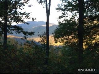 9999  Clovercrest Drive  , Hendersonville, NC 28792 (MLS #572788) :: Caulder Realty and Land Co.