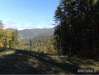 45  Bartram's Walk Dr  , Asheville, NC 28804 (MLS #572809) :: Exit Realty Vistas