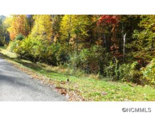 90  Woodland Aster Way  , Asheville, NC 28804 (MLS #572815) :: Exit Realty Vistas