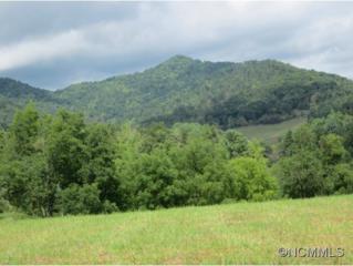 99999  Snook's Path  , Mars Hill, NC 28754 (MLS #572827) :: Exit Realty Vistas