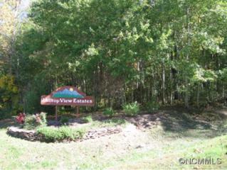 12  Hilltop View Drive  , Fletcher, NC 28732 (MLS #572926) :: Exit Realty Vistas