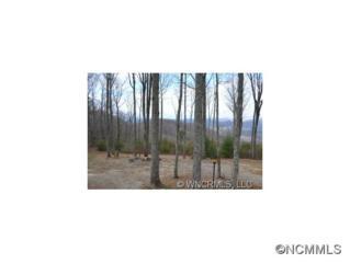 Lot 12  High Top  , Fletcher, NC 28732 (MLS #572972) :: Exit Realty Vistas