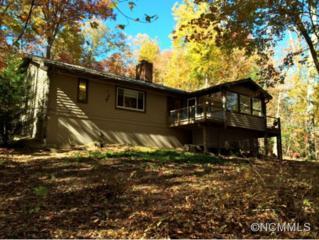 500  Purple Finch Trail  , Brevard, NC 28712 (MLS #572979) :: Exit Realty Vistas