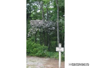C-3  Eagle Drive  , Sapphire, NC 28774 (MLS #572994) :: Exit Mountain Realty