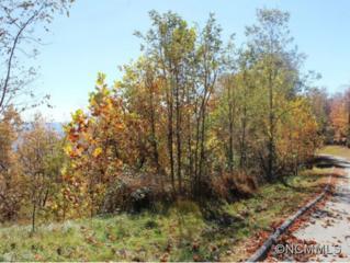 LOT 12  Bobcat Lair Drive  , Mills River, NC 28759 (MLS #573039) :: Caulder Realty and Land Co.