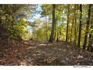 250  White Oak Way  , Hot Springs, NC 28743 (MLS #573046) :: Exit Realty Vistas