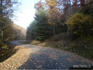 Lot 40  Oakridge Drive  , Maggie Valley, NC 28751 (MLS #573253) :: Exit Realty Vistas