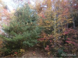 Lot 46  Oakridge Drive  , Maggie Valley, NC 28751 (MLS #573254) :: Exit Realty Vistas