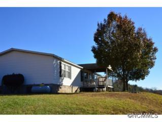 1040  East Fork Rd.  , Marshall, NC 28753 (MLS #573651) :: Exit Realty Vistas