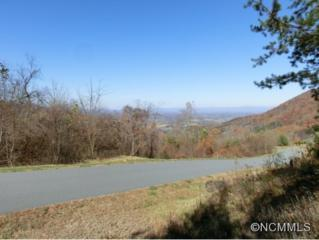 156  View Ridge Parkway  , Leicester, NC 28748 (MLS #573731) :: KW The Puffer Team