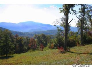 Lot 37  Grand Oaks Drive  , Hendersonville, NC 28792 (MLS #573759) :: Caulder Realty and Land Co.