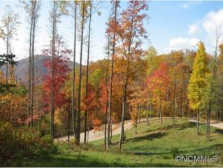 0  Dicks Creek  , Whittier, NC 28789 (MLS #573924) :: Exit Realty Vistas