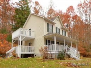 360  Sam Fox Road  , Mars Hill, NC 28754 (MLS #573995) :: Exit Realty Vistas