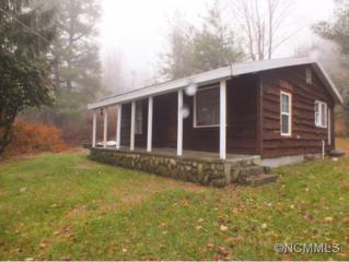 67  Tepee Ridge  , Maggie Valley, NC 28751 (MLS #574022) :: Exit Realty Vistas