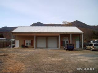 3649  Jonathan Creek Rd.  , Waynesville, NC 28785 (MLS #574121) :: Exit Realty Vistas