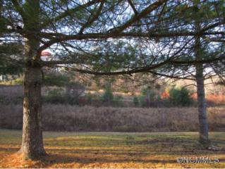 Lot 6  Logan Lane  , Etowah, NC 28729 (MLS #574130) :: RE/MAX Four Seasons Realty