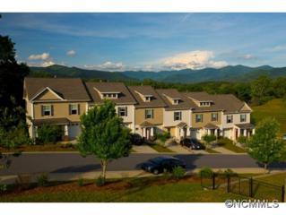 20  Barnett Shoals Dr  , Weaverville, NC 28787 (MLS #574169) :: Exit Realty Vistas