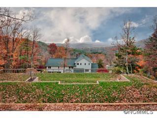 116  Robinhood  , Asheville, NC 28804 (MLS #574246) :: Exit Realty Vistas