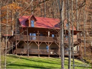 420  Chimney Rock Drive  , Weaverville, NC 28787 (MLS #574275) :: Exit Realty Vistas