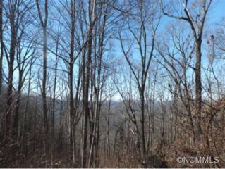 9  Austin Mountain Dr  , Burnsville, NC 28714 (MLS #574344) :: Exit Realty Vistas