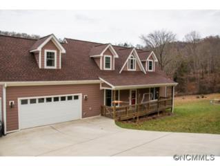 39  Sunnie Rae Lane  , Candler, NC 28715 (MLS #574375) :: Puffer Properties
