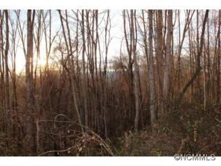 17  Scenic View Dr  , Hendersonville, NC 28792 (MLS #574390) :: Exit Realty Vistas