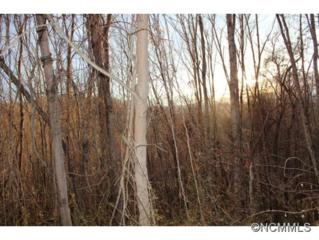 18  Scenic View Dr.  , Hendersonville, NC 28792 (MLS #574391) :: Exit Realty Vistas