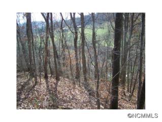 Lot 63  Turkey Run Drive  , Mars Hill, NC 28754 (MLS #574403) :: Exit Realty Vistas