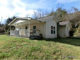 170  Pinebrook Road  , Asheville, NC 28804 (MLS #574669) :: Exit Realty Vistas