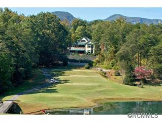 172  Summer Morning Court  , Lake Lure, NC 28746 (MLS #574701) :: Exit Mountain Realty