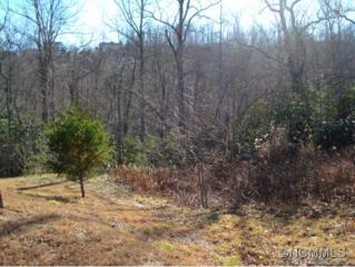 50  Barnsdale  , Hendersonville, NC 28791 (MLS #575036) :: Exit Realty Vistas