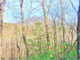 16/17  Rumbling Bald Road  , Lake Lure, NC 28746 (MLS #575048) :: Exit Realty Vistas
