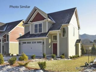 5  Gold Leaf Walkway  , Black Mountain, NC 28711 (MLS #575063) :: Exit Realty Vistas