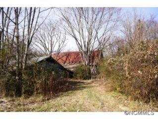 6612  Boylston Hwy  , Mills River, NC 28759 (MLS #575173) :: Exit Realty Vistas