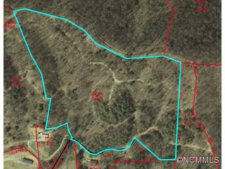 000  Off Sutton Town Rd.  , Waynesville, NC 28786 (MLS #575175) :: Exit Realty Vistas