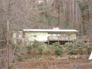 408  Ken Cove Rd  , Hot Springs, NC 28743 (MLS #575179) :: Exit Realty Vistas
