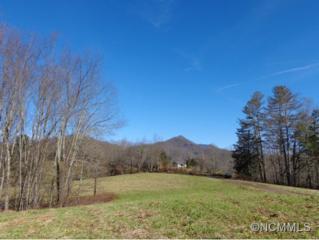 26  Thankful Ridge  , Waynesville, NC 28785 (MLS #575184) :: Exit Realty Vistas