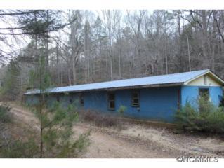 1958  Brown Mtn Beach Rd  , Morganton, NC 28655 (MLS #575216) :: Puffer Properties