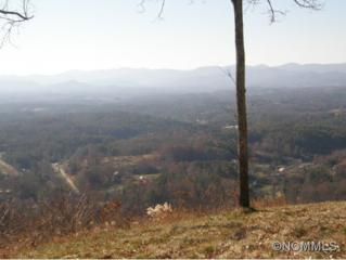 TBD  King Road  , Weaverville, NC 28787 (MLS #575218) :: Exit Realty Vistas