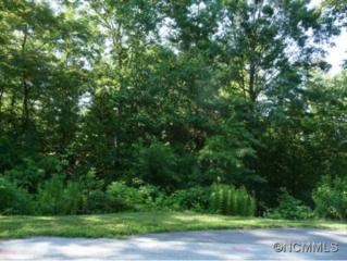 96  Turkey Roost Court  , Hendersonville, NC 28739 (MLS #575526) :: Puffer Properties