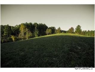 00  Blanton Rd.  , Mill Spring, NC 28756 (MLS #576096) :: Exit Realty Vistas