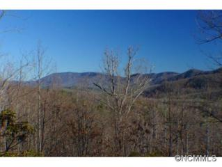 67  Nuthatch  , Black Mountain, NC 28711 (MLS #576098) :: Exit Realty Vistas