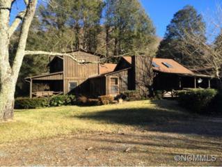 2057  Pisgah Highway  , Candler, NC 28715 (MLS #576219) :: Puffer Properties