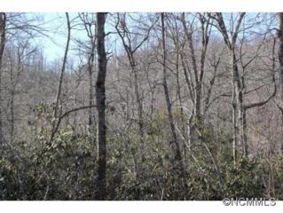 76  Barnsdale Ln  , Hendersonville, NC 28791 (MLS #576250) :: Exit Realty Vistas
