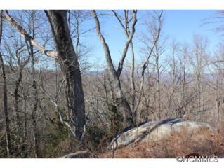 25  Wood Owl Court  , Hendersonville, NC 28791 (MLS #576255) :: Exit Realty Vistas