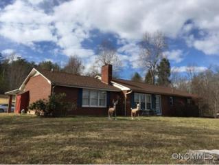 4554  Harmony Grove Road  , Nebo, NC 28761 (MLS #576387) :: Exit Realty Vistas