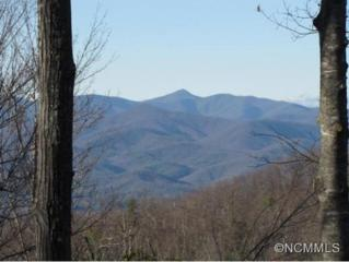 276  Walnut Ridge Circle  , Brevard, NC 28712 (MLS #576405) :: Exit Mountain Realty