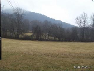 130  Avery's Creek Road  , Arden, NC 28704 (MLS #576456) :: Exit Realty Vistas