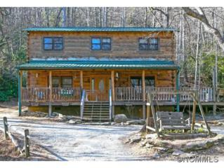 1177  Rhodes Road  , Hendersonville, NC 28792 (MLS #576479) :: Caulder Realty and Land Co.
