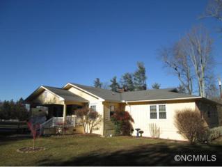437  Rutledge Drive  , Hendersonville, NC 28739 (MLS #576481) :: Exit Realty Vistas